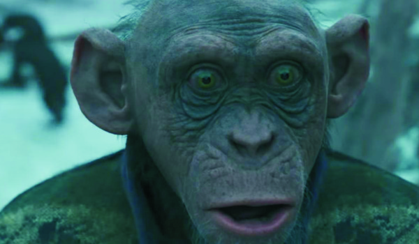 """Kadr z filmu """"Wojna o planetę małp"""""""