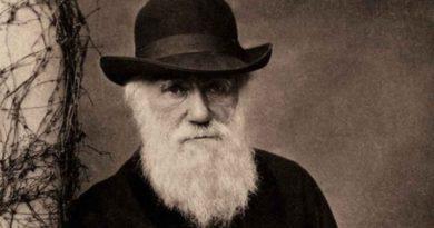 Debaty Małej Rady: Nagroda maestera Darwina (finał)