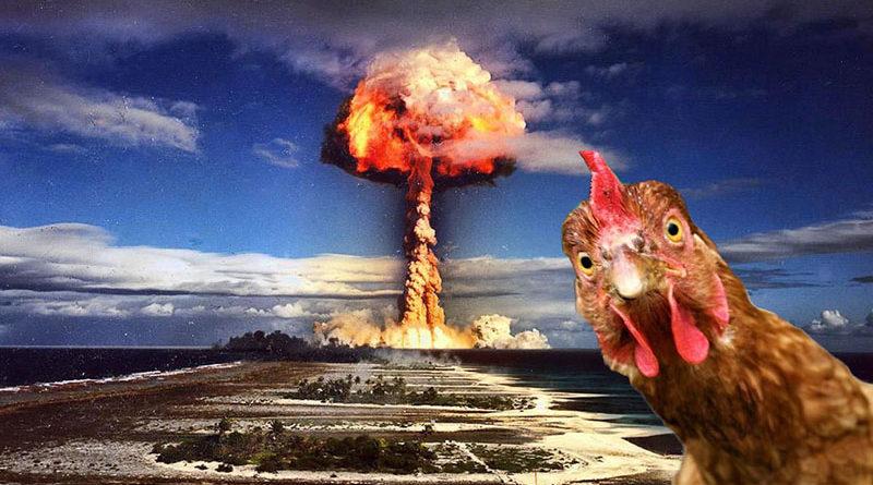 Niedzielne Fiszki: Atomowe kury i niebieskie pawie