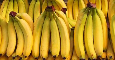 Niedzielne Fiszki: Skąd się biorą krzywe banany?